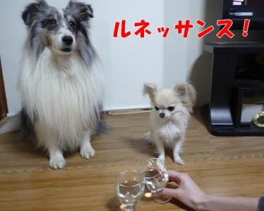 3.乾杯!