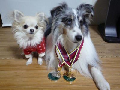 4.金銀メダル