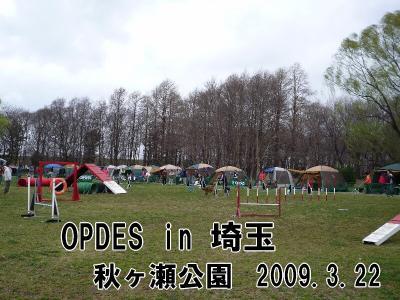 5.秋ヶ瀬公園