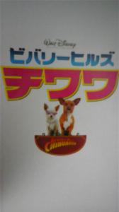 chiwawa DVC00111