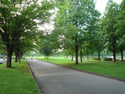 3.広い公園
