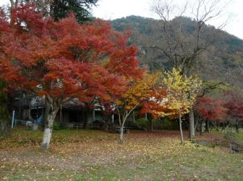 桃太郎公園グランド