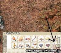 2_20090329151112.jpg
