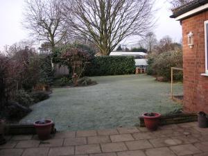 朝10時の白い庭