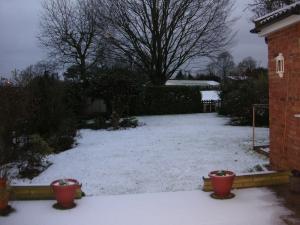 雪が積もってしまった