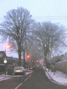 前の通りの雪化粧