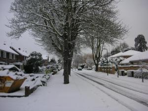 前の道も雪で