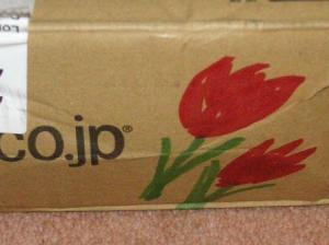 tulipnoe