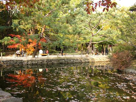 *池に映った紅葉~綺麗です~*