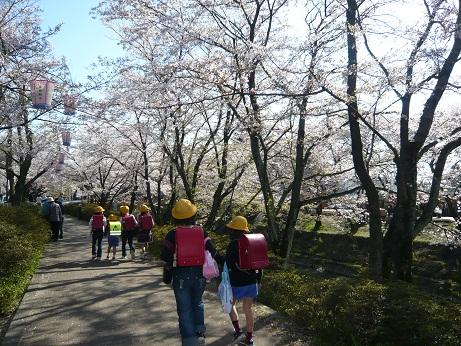 *桜並木の通学路~*