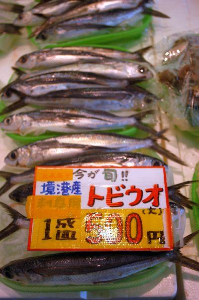 20110626 境港水産物直売センター とびうお