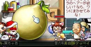 Maple0018 (2)