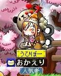 Maple0001_20090422114802.jpg