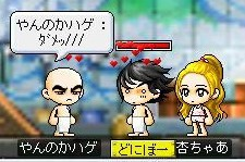 Maple0008_20090306065934.jpg