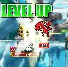 Maple0008_20090602225105.jpg
