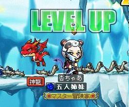 Maple091130_134448.jpg