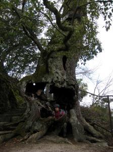 2009.1.4  宮島 017