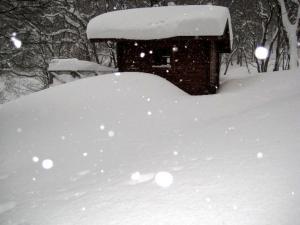 2009.1.11 ~12 比婆山  001