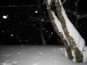 2009.1.11 ~12 比婆山  014