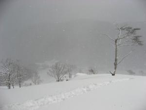 2009.1.24  深入山 010