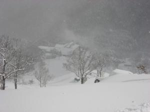 2009.1.24  深入山 012
