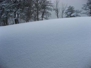 2009.1.24  深入山 030