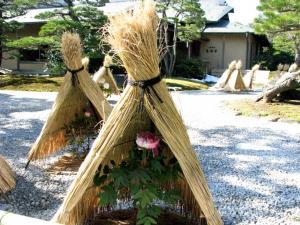 2009.1.28  大根島 012
