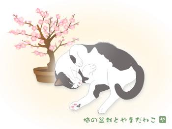 イラスト「梅の盆栽とやまだねこ.jpg