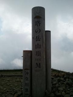 tanzawa1_c.jpg