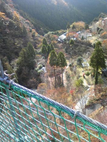 吊橋から_convert_20081123230445