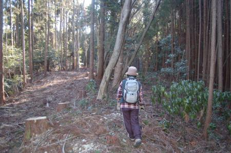 13鷹取山への山道