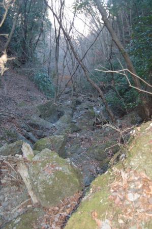34安龍ヶ滝下流の沢