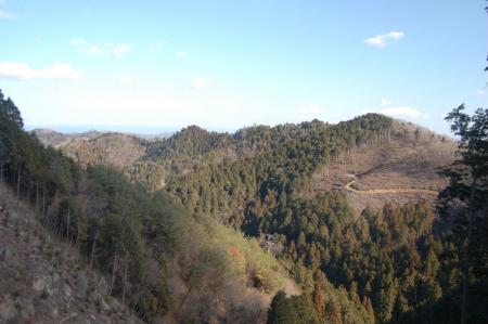 焼森山山頂から