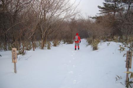 3桜沢沿いの山道