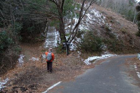 林道を横切る
