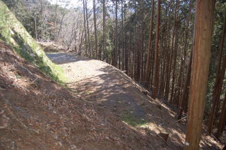 12林道終点