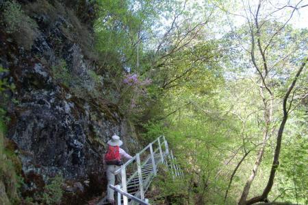 東剣ノ峰への階段道13