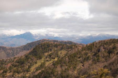 山頂から至仏山