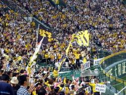 阪神7月3日 033