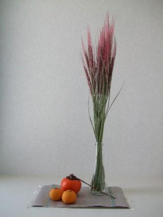 玄関飾り 赤米の稲穂と柿とすだちと