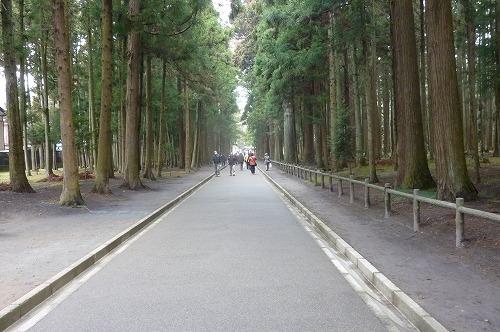 瑞巌寺参道