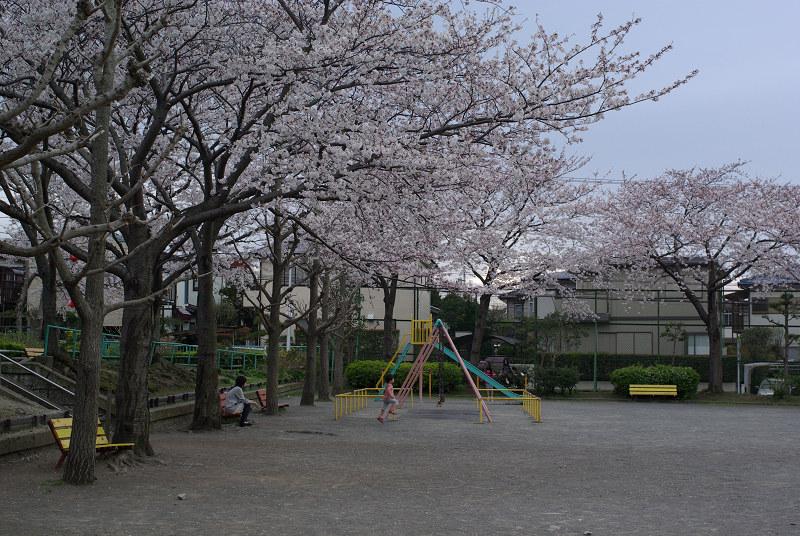s35 mm-2009-04-04_16_48_31