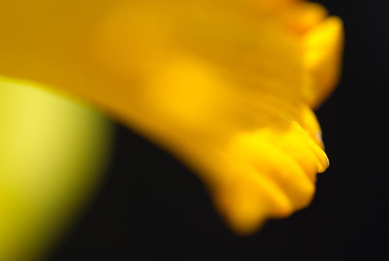 s120 mm-2009-03-21_11_11_58