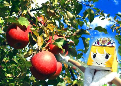 リンゴのよおなほっぺになりたいの