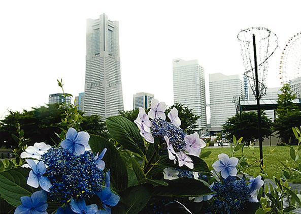 横浜風景-20090529