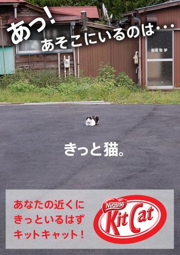 キットキャット店頭10