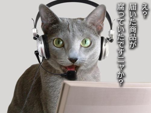 再春館猫苦情篇CM4