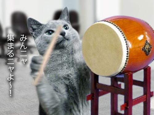 再春館猫太鼓篇CM3