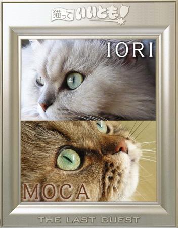 いいともiomoca38