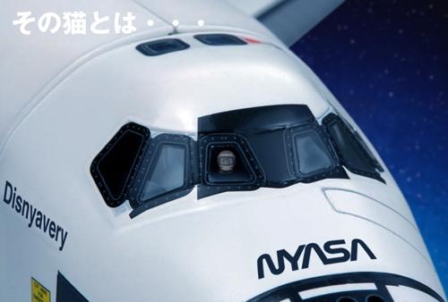 NYASA6